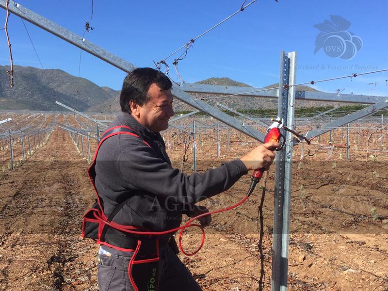 Chile Electric Sissors Open Gable Trellis