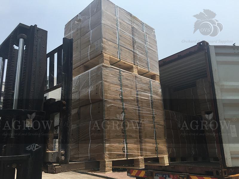 AGROW Grape Bags Peru 2015 Shipment